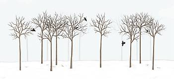 Grafika - RAVEN IN DARK FOREST - 9410625_