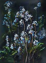 Obrazy - Biele v tme - 9424234_