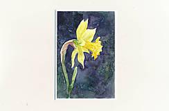 Papiernictvo - Ručne maľovaná pohľadnica - Narcis na tmavom pozadí - 9427712_