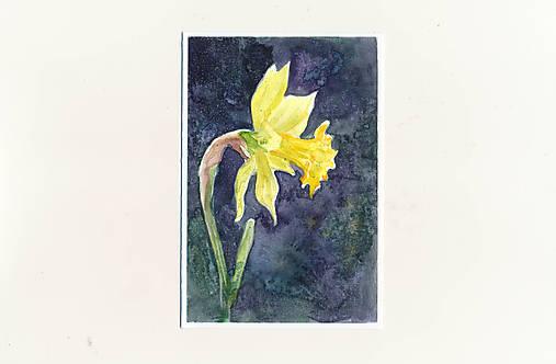 Ručne maľovaná pohľadnica - Narcis na tmavom pozadí
