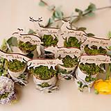 Dekorácie - Označenie stolov na svadbu (Sada 8mich zvieratiek) - 9428024_