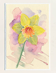 Papiernictvo - Ručne maľovaná pohľadnica - Žltý narcis - 9432067_