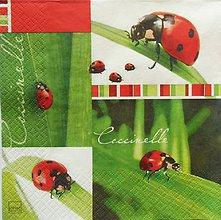 Papier - S1189 - Servítky - lienka, bodky, list, tráva, bodkovaná - 9434907_