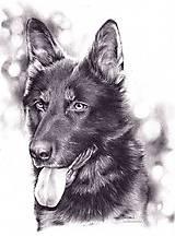 Portrét psíka na objednávku