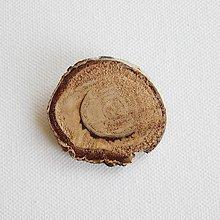 Odznaky/Brošne - brošňa 'Plain Woods' - 9438239_