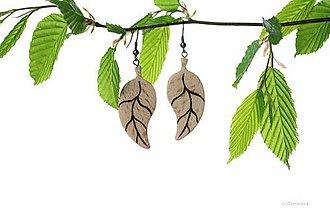 Náušnice - Drevené náušnice Listy, v.2 - 9463353_