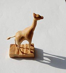Socha - Soška z dreva - Žirafa - 9473070_