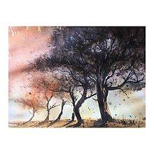 Obrazy - Stromy a zapad slnka - 9484873_