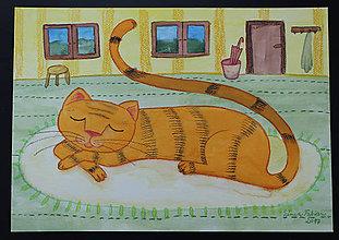 Obrazy - Spiaca mačka - 9486416_
