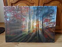Obrazy - Prebúdzanie lesa - 9497774_