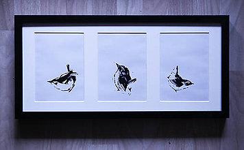 Grafika - Tri oriešky pre Popolušku linoryt - 9506271_