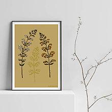 Grafika - Botanika - Šalvia - Art Print - 9505901_