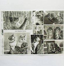 Papier - Ryžový papier na decoupage -A4-R1236 - mačka, mačiatka - 9507682_