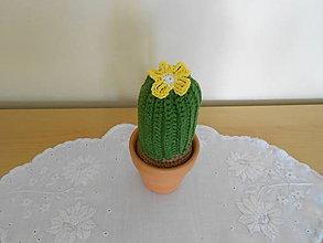 Dekorácie - Kaktus Servác - 9511470_