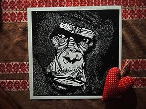 Grafika - Linorez gorila - 9514499_