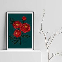 Grafika - Botanika - Pivónia II. - Art Print - 9517799_