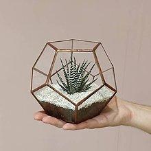 Dekorácie - Terárium s kaktusom - 9527151_