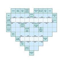 Grafika - Elegantná čipkovaná krížovka - modrá - 9529187_