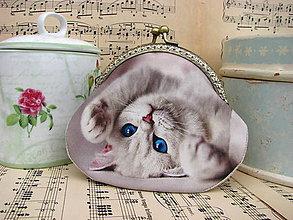 Taštičky - Bílé kotě - taštička - 9551706_