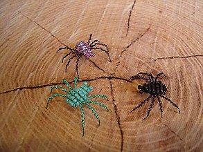 Magnetky - Pavúčik - 9552491_