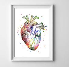 Grafika - Anatómia ľudského srdca - 9552955_
