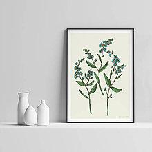 Grafika - Botanika - Nezábudka - Art Print - 9553261_