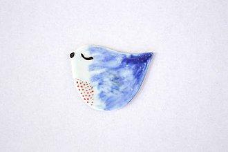 Odznaky/Brošne - Porcelánová brošňa Vtáčik Adam - 9574283_