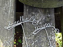 Dekorácie - bylinka, bylinky..zápich - 9582289_