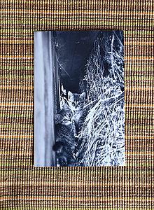 Papiernictvo - Pohľadnica v zľave - 9587121_