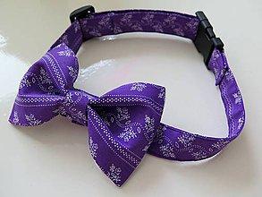Pre zvieratká - fialový motýlik pre psíka - 9589369_