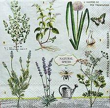 Papier - S1230 - Servítky - bylinky, levandula, herbs, herbár, motýľ - 9592301_