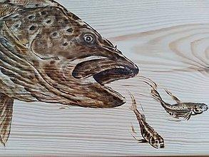 Dekorácie - Ryby obrázky - 9595301_