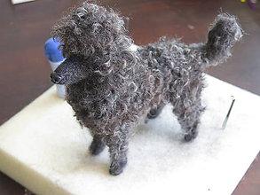 Dekorácie - Plstený pudel podľa fotky, z jeho vlastných (psích) chlpov. - 9595695_