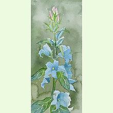 Obrazy - Modré zvonky - originál, akvarel - 9594965_