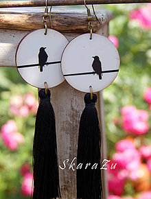 Náušnice - Vtáčiky s hodvábom - 9601173_