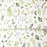 - herbár, 100 % predzrážaná bavlna Španielsko, šírka 150 cm, cena za 0,5 m - 9606369_