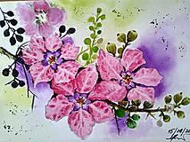 Obrazy - Kvety 2 - 9635392_