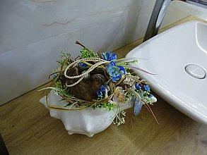 Dekorácie - morská mušľa - 9634564_