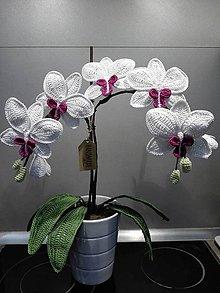 Dekorácie - Orchidea - 9634233_