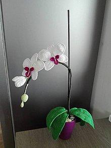 Dekorácie - Orchidea - 9634242_