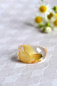 Prstene - Prsteň Agát a zlato (2470 A) - 9638056_