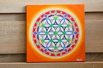 Obrazy - Mandala - 9646056_