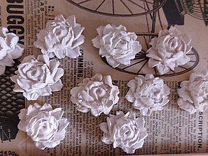 Polotovary - Ruža vysoká - 9648951_