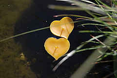 Svietidlá a sviečky - Plávajúce srdiečka - 9657811_
