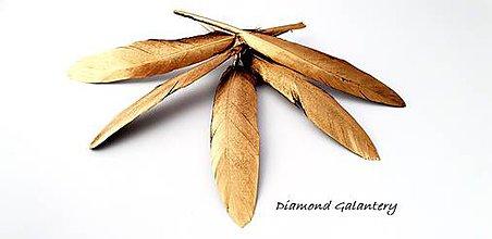Galantéria - Dekoračné pierka zlaté - 9664891_
