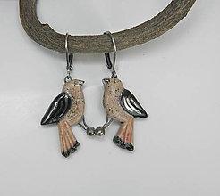 Náušnice - Keramické náušnice - vtáčiky - 9667452_