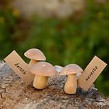 Dekorácie - Hríby - menovky/darčeky pre svadobčanov - 9667362_