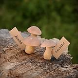 Dekorácie - Hríby - menovky/darčeky pre svadobčanov - 9667363_