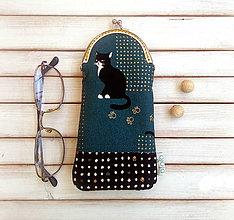 Taštičky - Púzdro na okuliare Vážna mačka - 9669476_