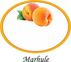 Papiernictvo - Etikety na marhule alebo džem - 9676718_